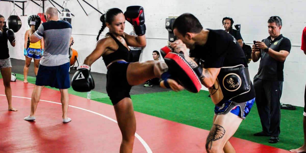 kickboxing wolfpack boxing club miami